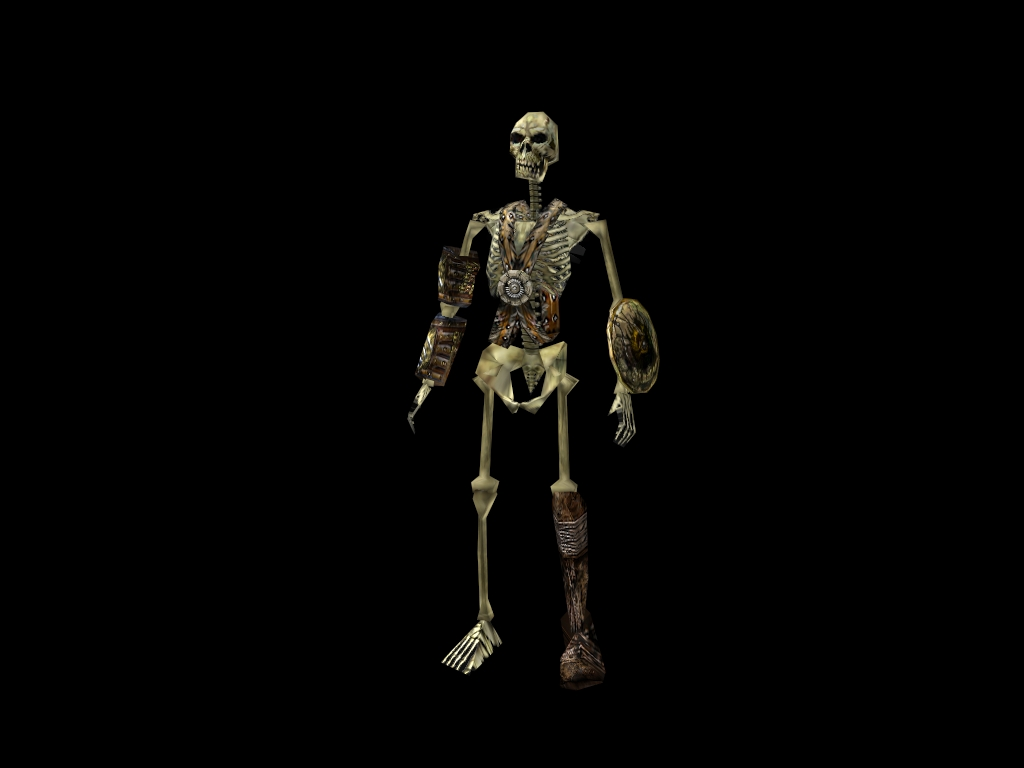 Skeleton C