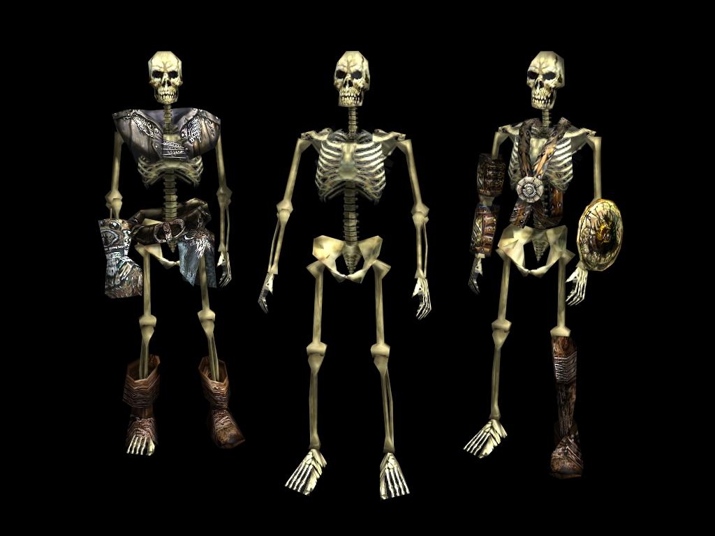 3 Skeletons frontside