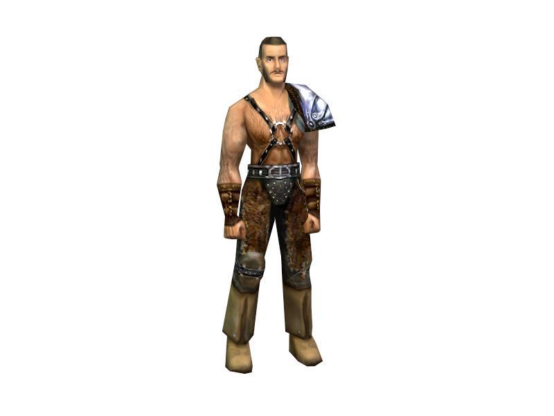 Mercenary light