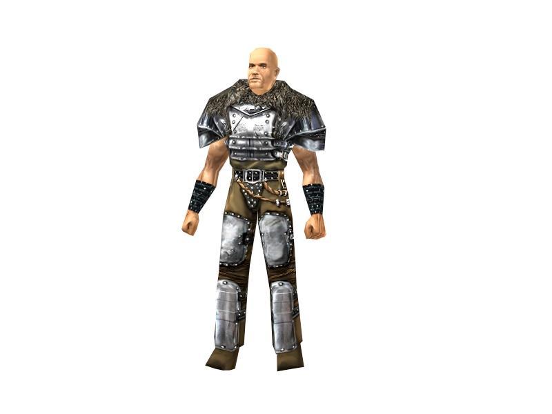 Mercenary heavy