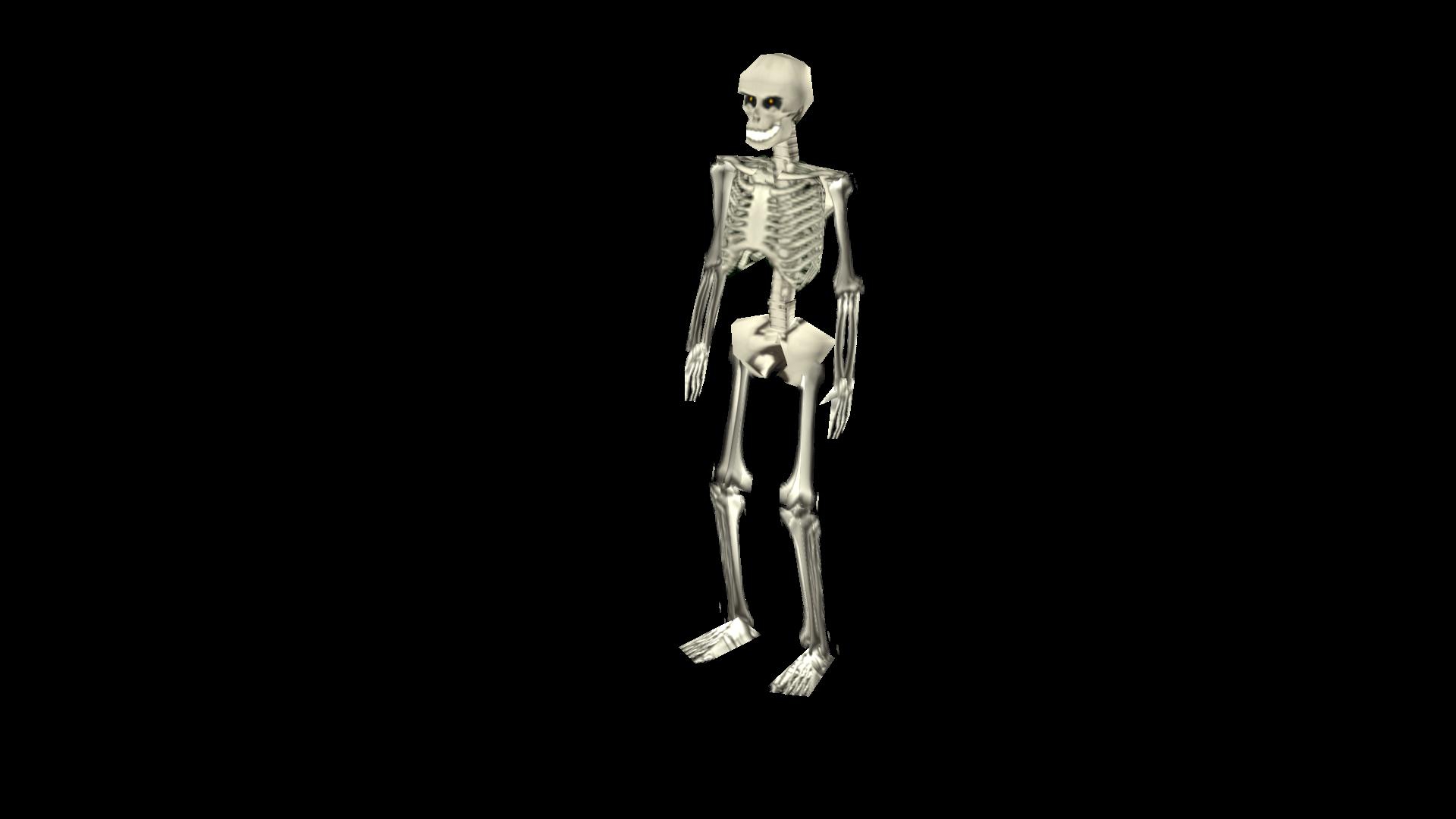 Skeleton Position 1