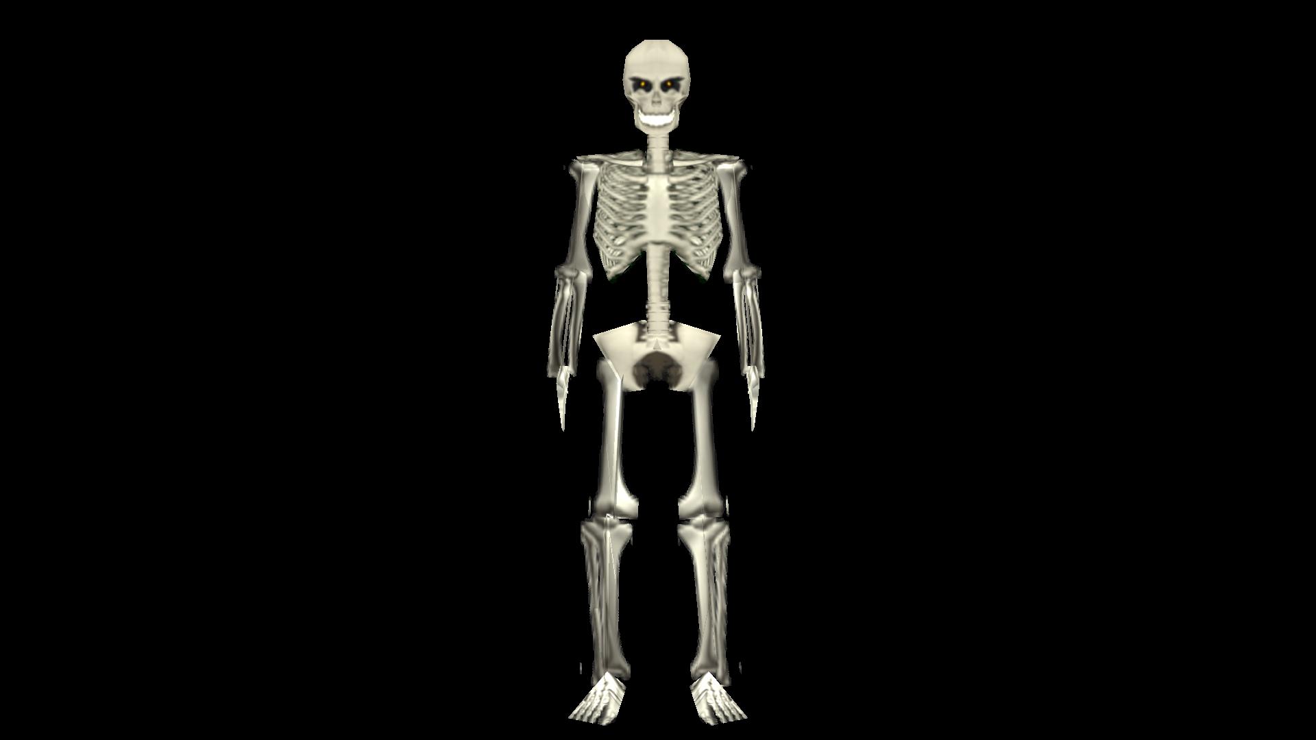 Skeleton Position 2