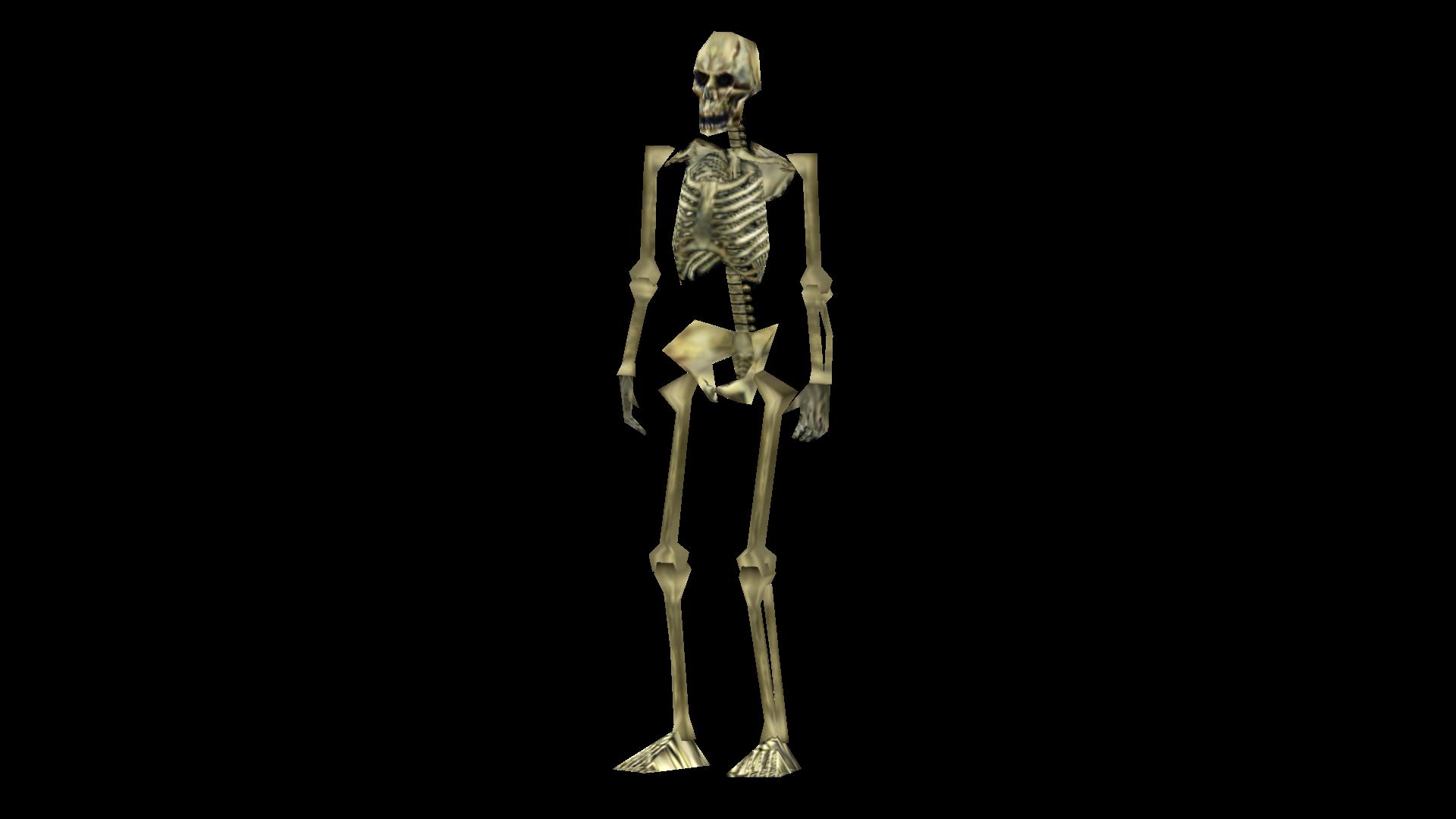 Skeleton Perspective