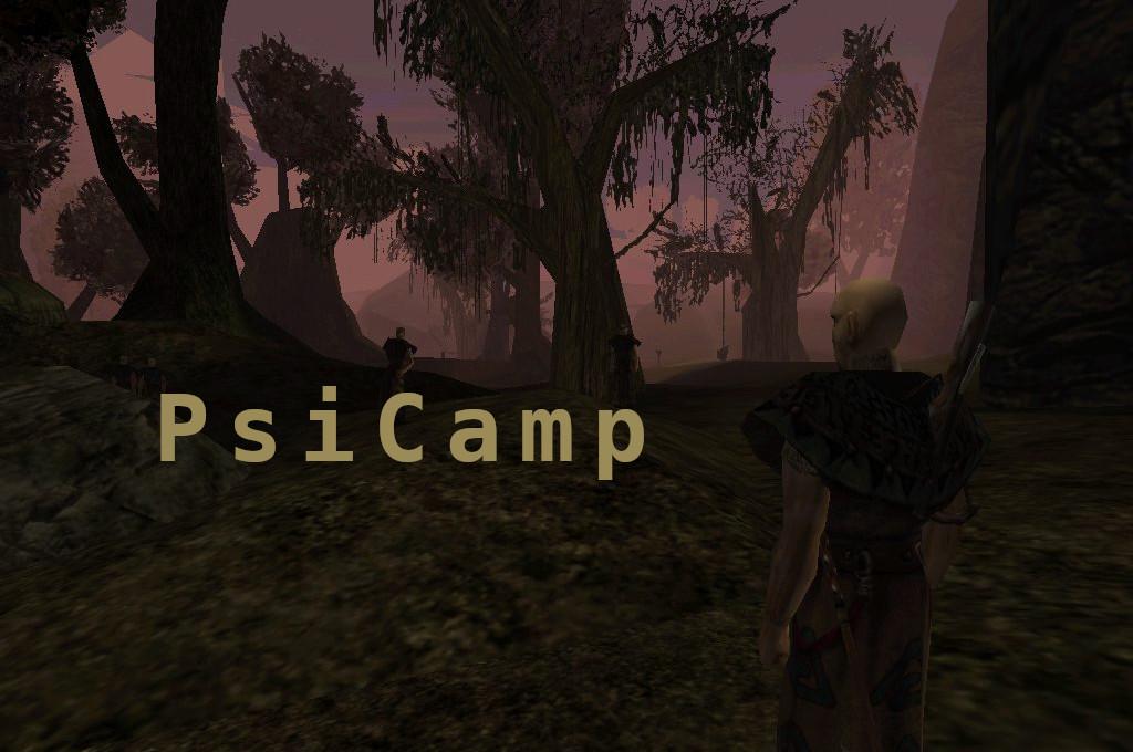 Psi Camp